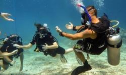 dive course 5.jpg