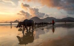 SELONGBELANAK-beach