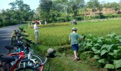 lombok-biking-03.jpg